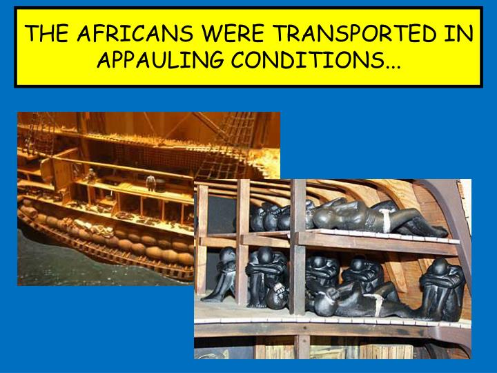 THE AFRICANS WERE TRANSPORTED IN APPAULING CONDITIONS...