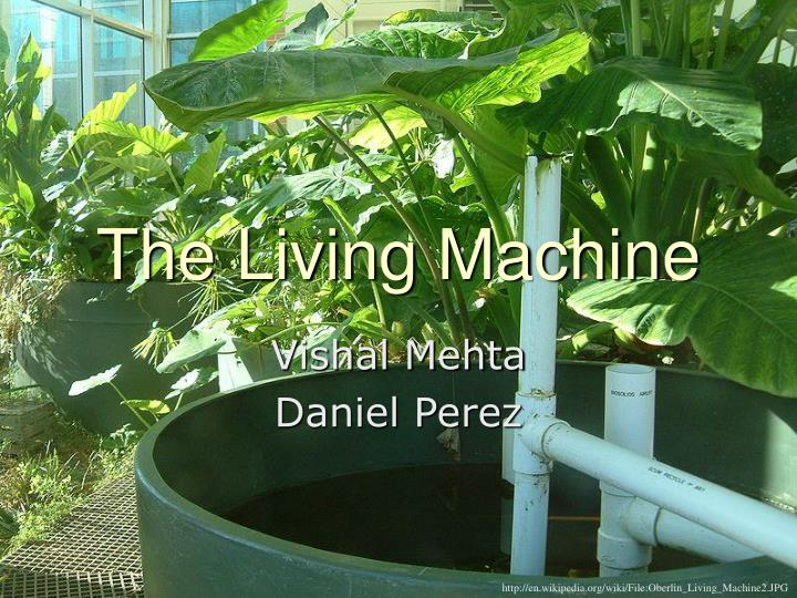 The living machine