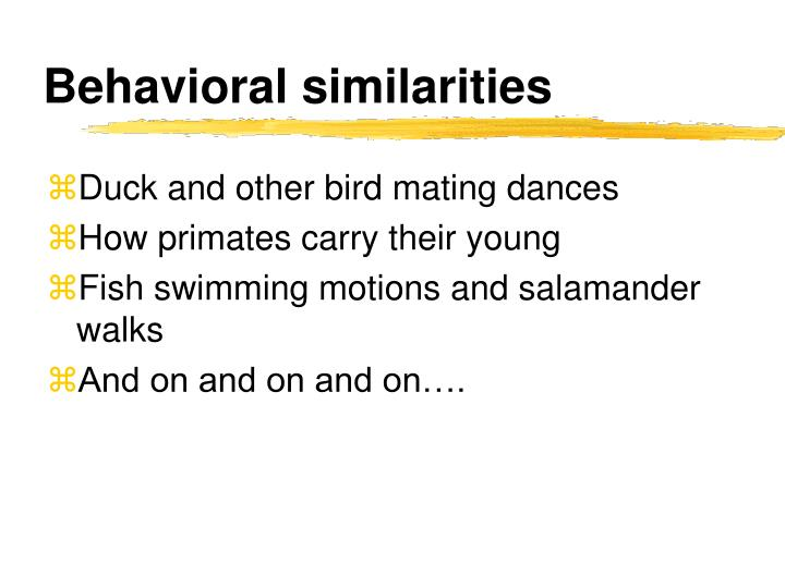 Behavioral similarities