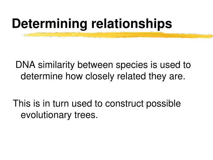 Determining relationships