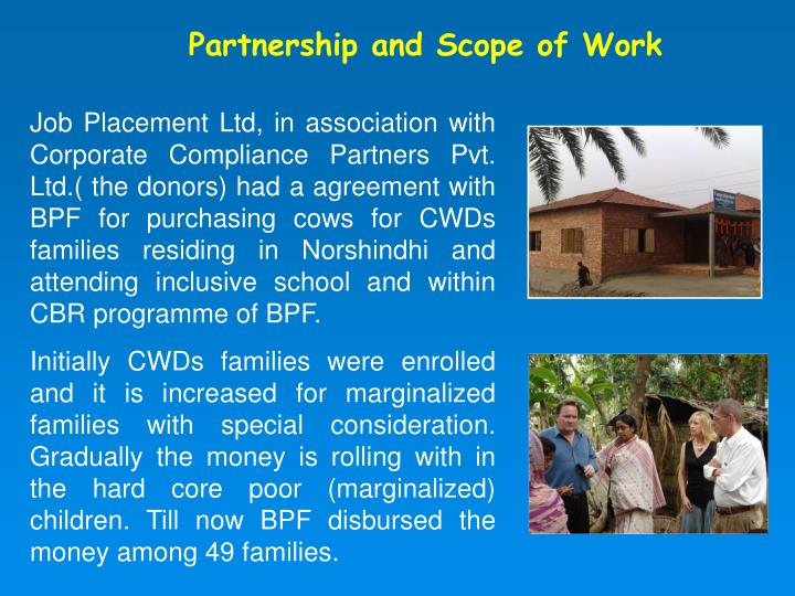 Partnership and Scope of Work