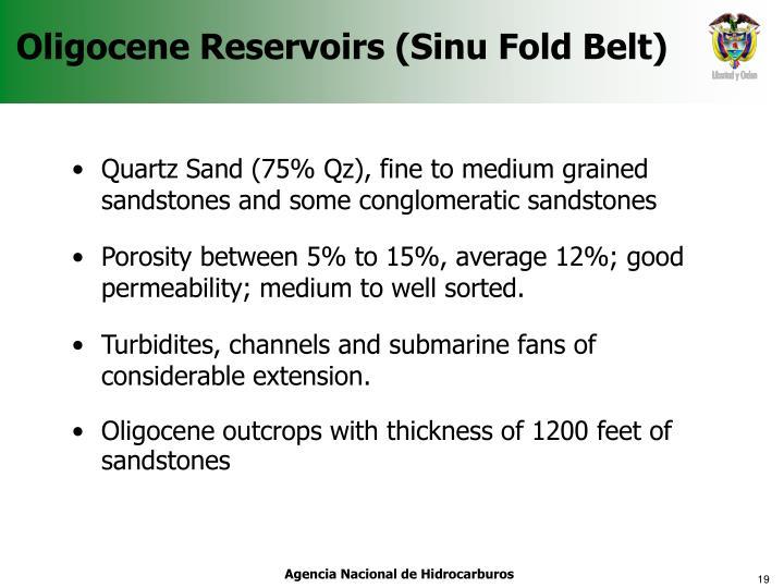 Oligocene Reservoirs