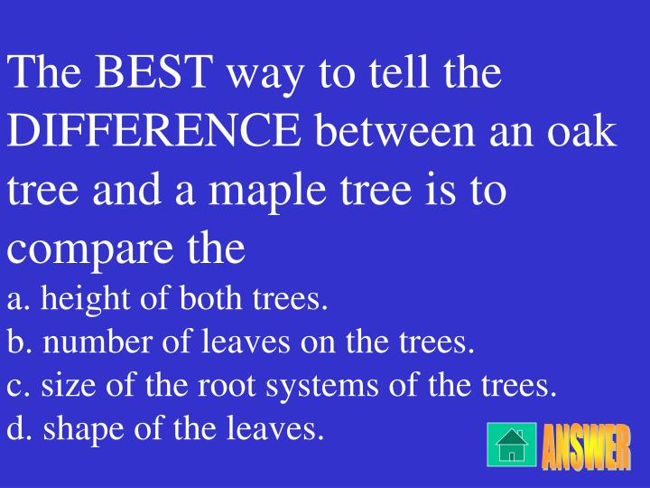 The BEST way to tell the DIFFERENCE between an oak tree and a maple tree is to compare the