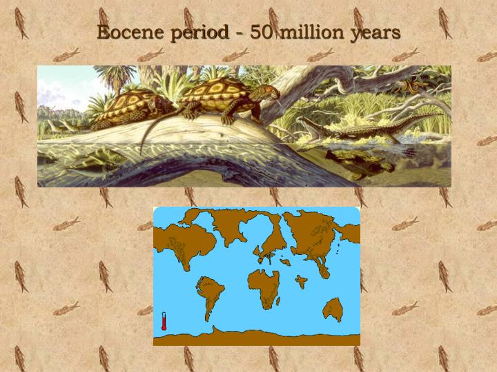 Eocene period - 50 million years
