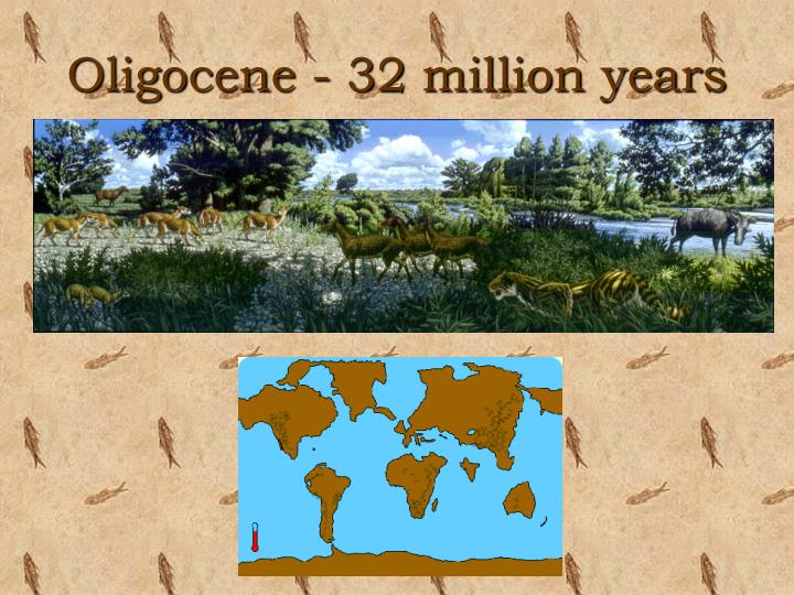 Oligocene - 32 million years