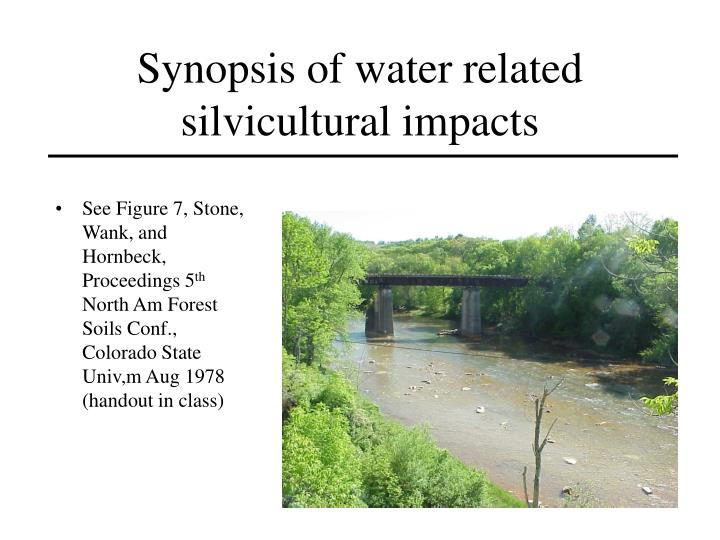 Synopsis of water related silvicultural impacts