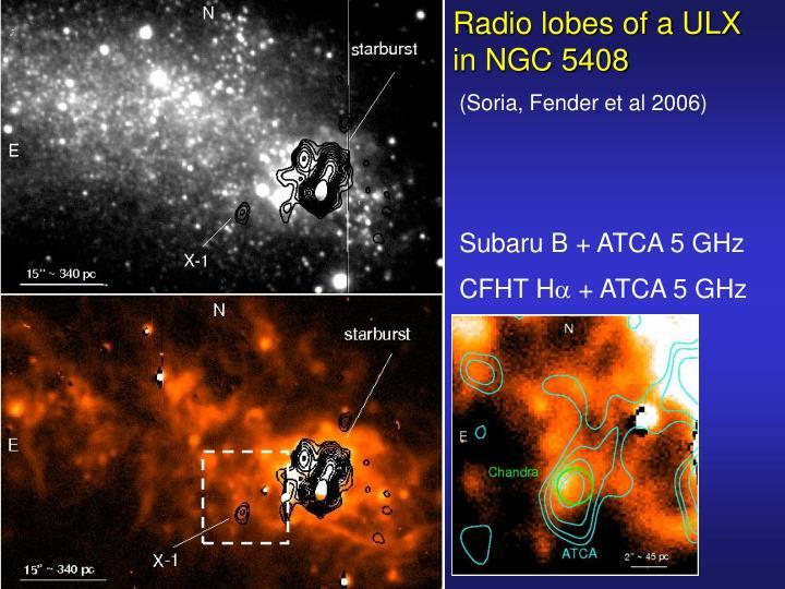 Radio lobes of a ULX