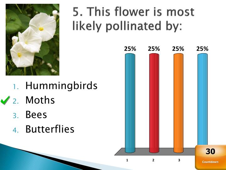 5. This flower is most likely pollinated by: