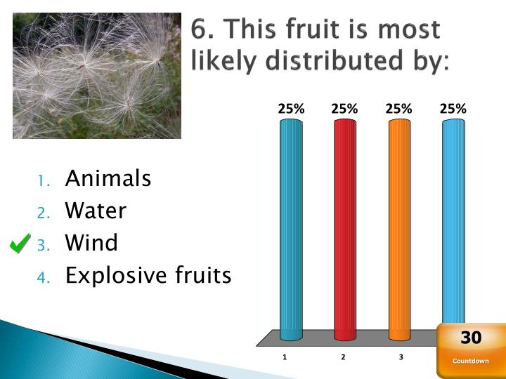 6. This fruit is most likely distributed by: