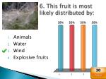 6 this fruit is most likely distributed by