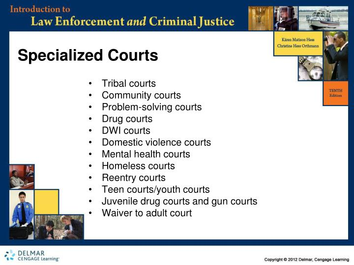 Specialized Courts