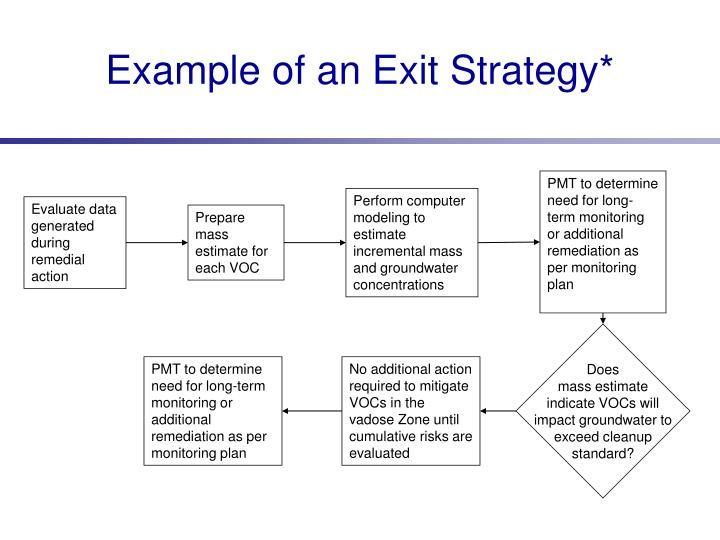 Example of an Exit Strategy*