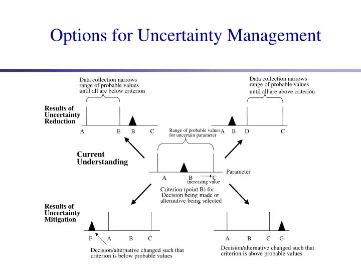 Options for Uncertainty Management