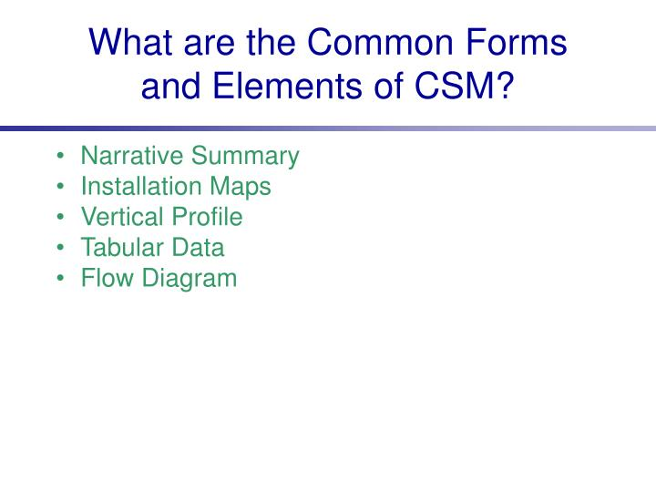 What are the Common Forms and Elements of CSM?