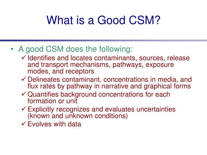 What is a Good CSM?