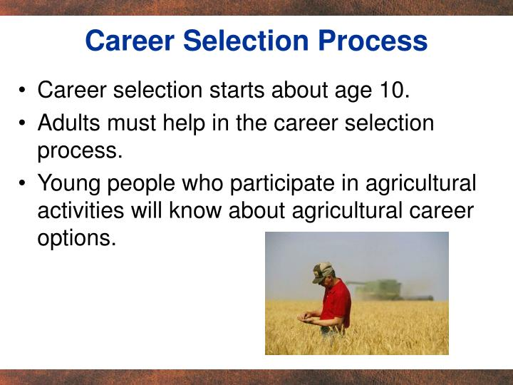 Career Selection Process
