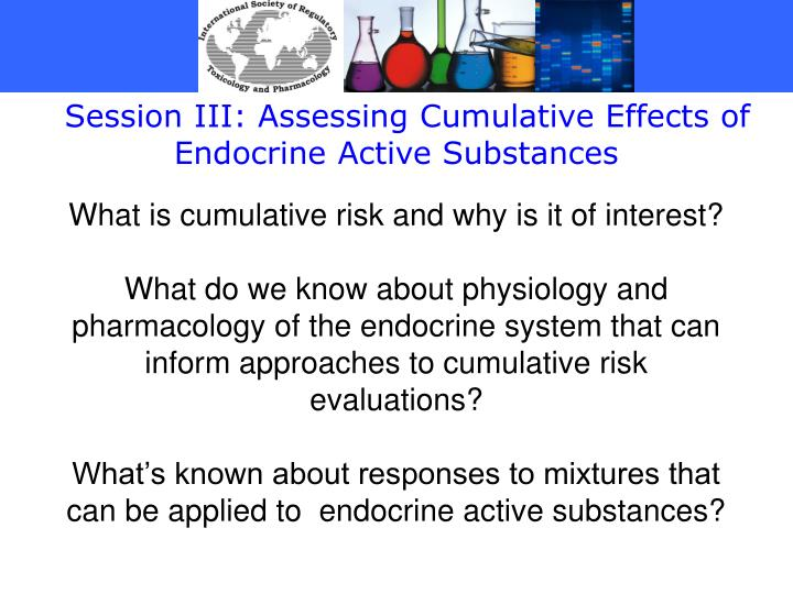 Session III: Assessing Cumulative Effects of Endocrine Active Substances