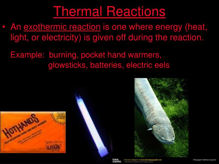 Thermal Reactions