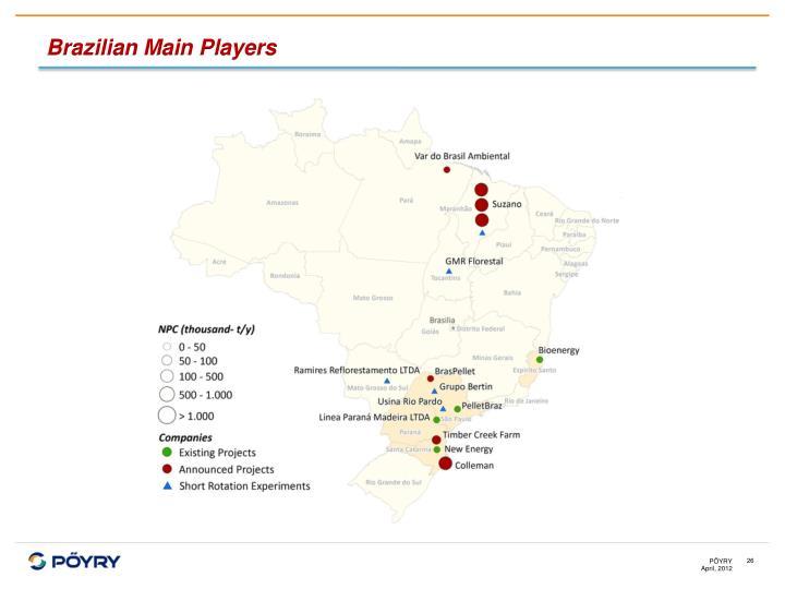 Brazilian Main Players