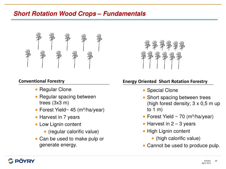 Conventional Forestry