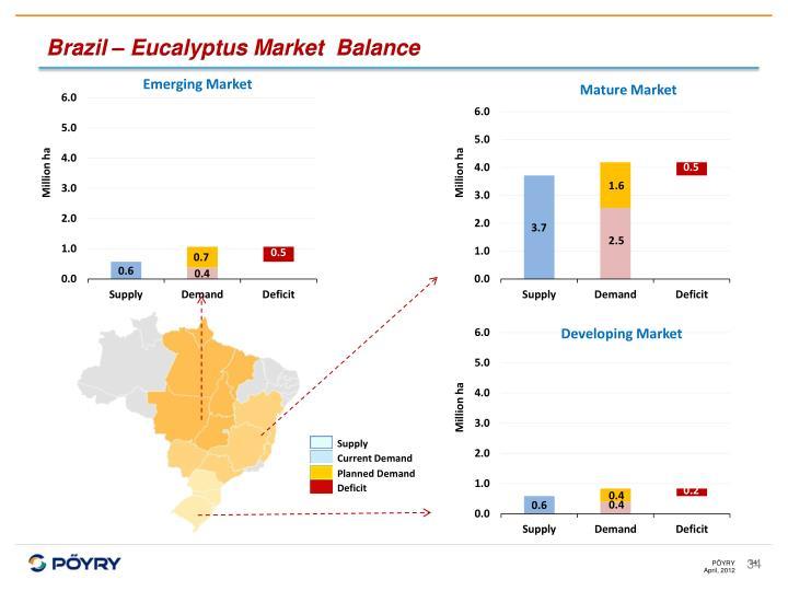 Brazil – Eucalyptus Market  Balance