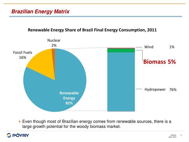 Brazilian Energy Matrix