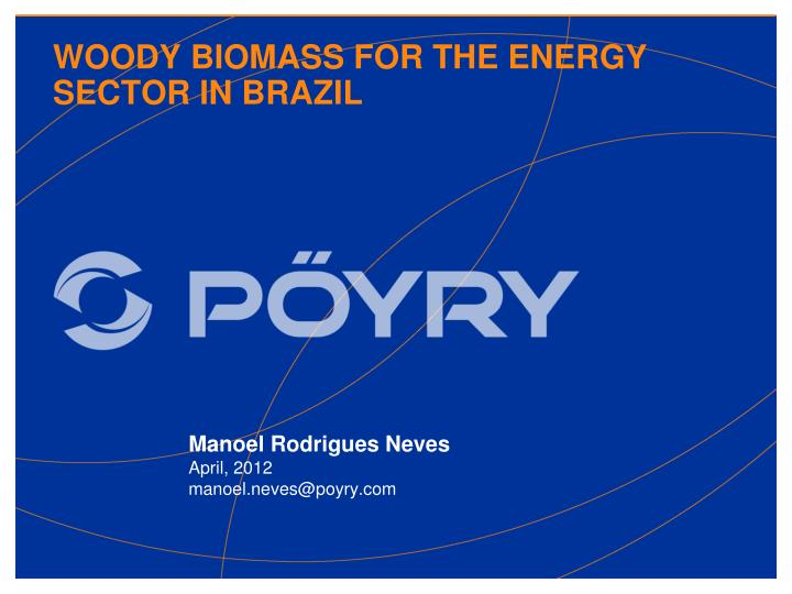 Woody biomass for the energy sector in brazil