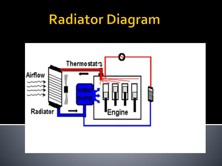 Radiator Diagram