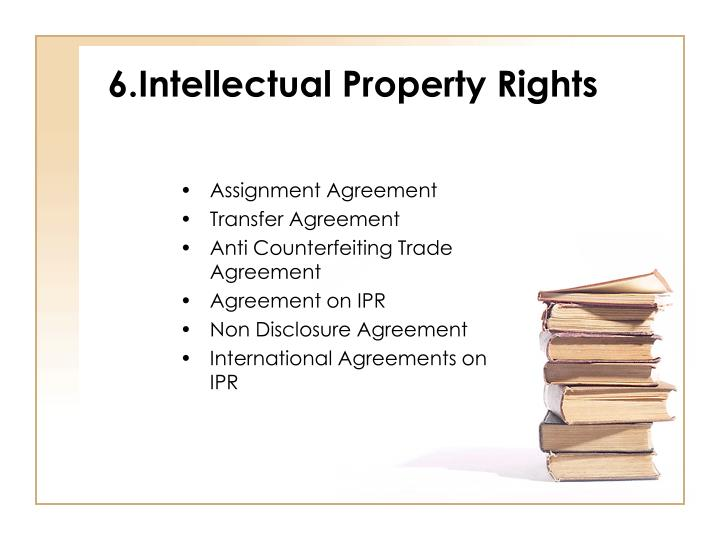 6.Intellectual Property Rights