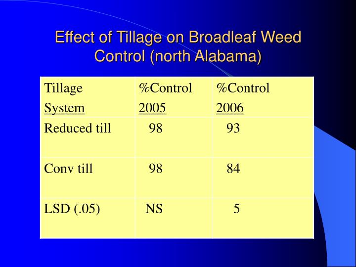 Effect of Tillage on Broadleaf Weed Control (north Alabama)