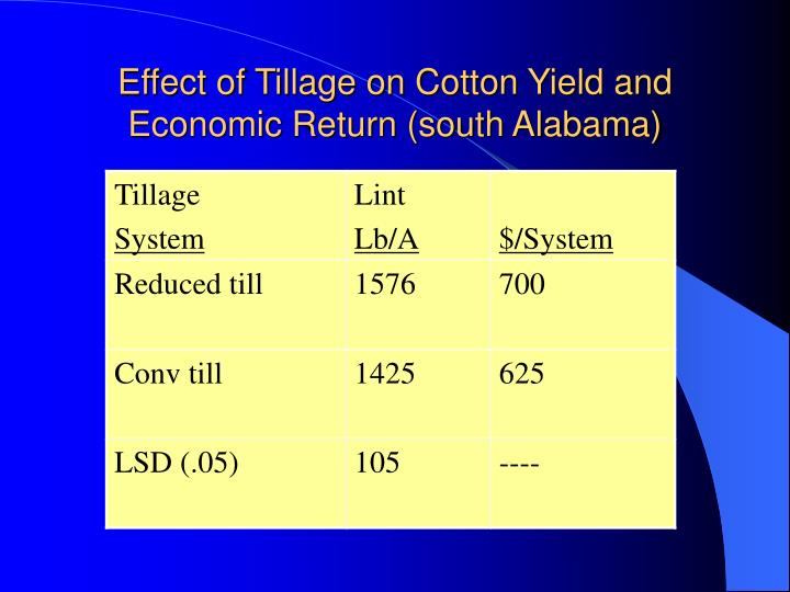 Effect of Tillage on Cotton Yield and Economic Return (south Alabama)