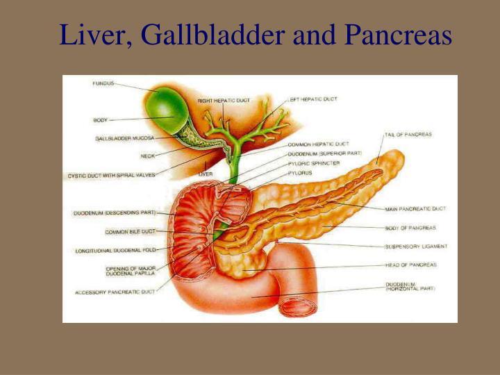 Liver, Gallbladder and Pancreas