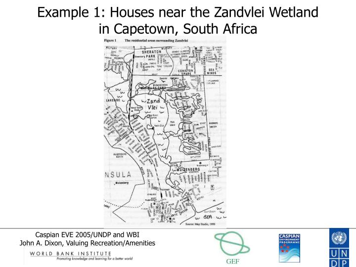 Example 1: Houses near the Zandvlei Wetland in Capetown, South Africa