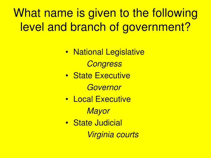 What name is given to the following level and branch of government?