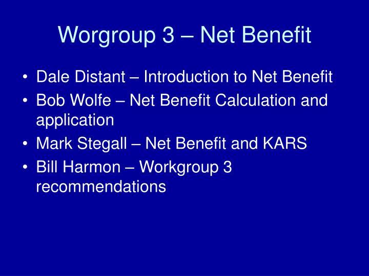 Worgroup 3 – Net Benefit