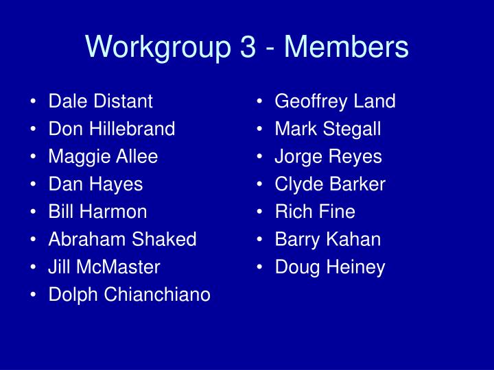 Workgroup 3 members