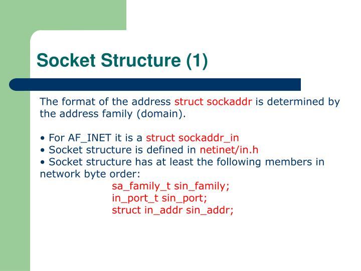 Socket Structure (1)