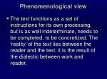 phenomenological view
