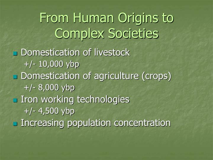 From human origins to complex societies