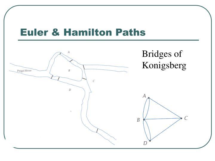 Euler & Hamilton Paths