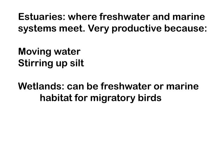 Estuaries: where freshwater and marine