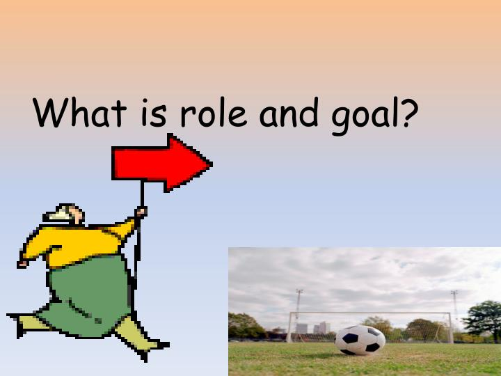 What is role and goal?