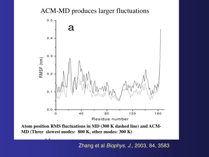ACM-MD produces larger fluctuations