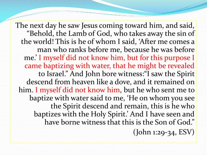 "The next day he saw Jesus coming toward him, and said, ""Behold, the Lamb of God, who takes away the sin of the world! This is he of whom I said, 'After me comes a man who ranks before me, because he was before me.'"