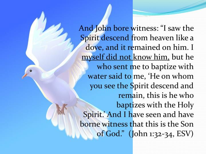 "And John bore witness: ""I saw the Spirit descend from heaven like a dove, and it remained on him. I"