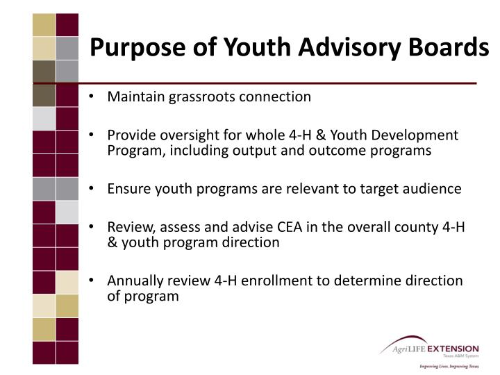 Purpose of Youth Advisory Boards