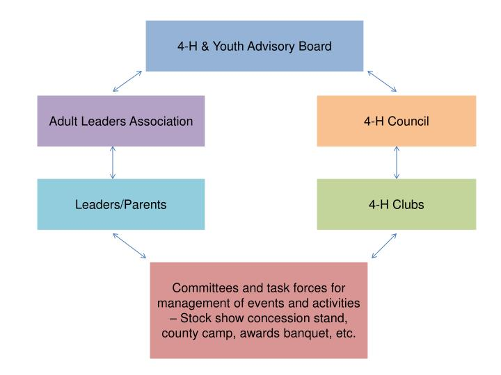 4-H & Youth Advisory Board