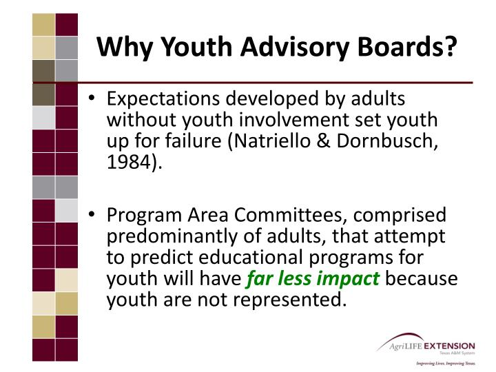 Why youth advisory boards