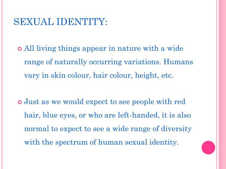 SEXUAL IDENTITY: