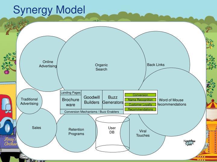 Synergy Model